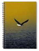 Eagle Haze Spiral Notebook