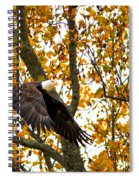 Eagle In Autumn Spiral Notebook