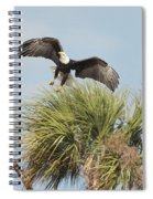 Eagle In The Palm Spiral Notebook