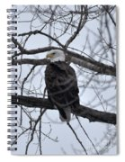 Eagle In The Wild Spiral Notebook