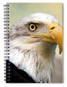 Eagle Portrait Spiral Notebook