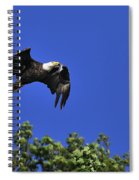 Eagle Over The Tree Top Spiral Notebook
