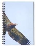 Eaglet 2012 Spiral Notebook