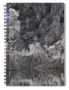 Early Morning Light Black And White Spiral Notebook