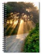 Early Morning Sunlight Spiral Notebook