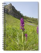 Early Purple Orchids Spiral Notebook
