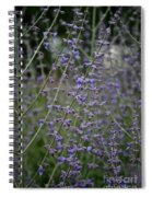 Early Russian Sage Spiral Notebook