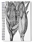 Ears Of Maize Spiral Notebook