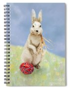 Easter Bunny With A Painted Egg Spiral Notebook