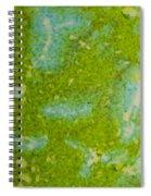 Easter Egg Green Macro 1 Spiral Notebook