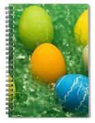 Easter Egg Seven 1 Spiral Notebook