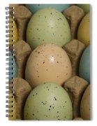 Easter Eggs Carton 1 A Spiral Notebook