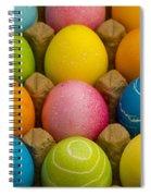 Easter Eggs Carton 2 A Spiral Notebook