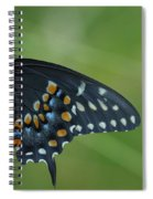Eastern Black Swallowtail Butterfly Spiral Notebook