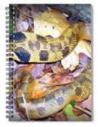 Eastern Hognose Snake Spiral Notebook