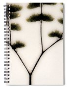 Eastern Influence Fern Spiral Notebook