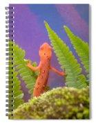 Eastern Newt 2 Spiral Notebook