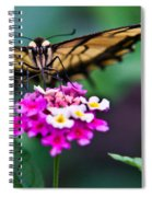 Eastern Tiger Swallowtail 7 Spiral Notebook