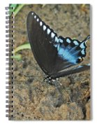 Eastern Tiger Swallowtail 8537 3215 Spiral Notebook