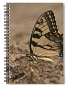 Eastern Tiger Swallowtail 8542 3219 Spiral Notebook