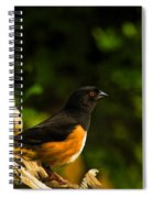 Eastern Towhee Spiral Notebook