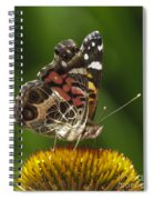 Echinacea Butterfly Meal Spiral Notebook