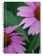 Echinacea Cone Flowers Spiral Notebook