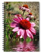 Echinacea In Water Spiral Notebook