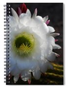 Echinopsis Candicans Spiral Notebook