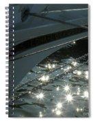 Edna's Bow Lights Spiral Notebook