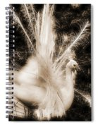 Effervescence IIi  Spiral Notebook