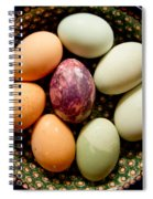 Eggs Spiral Notebook