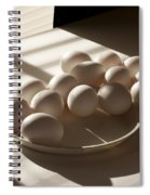 Eggs Lit Through Venetian Blinds Spiral Notebook
