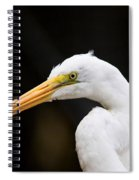 Egret - Old Whitey Spiral Notebook
