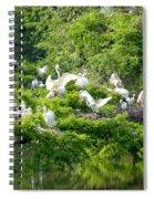 Egret Estuary Spiral Notebook
