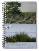 Egret Over Water Spiral Notebook