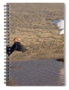 Egret Territory Spiral Notebook