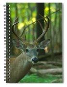 Eight Point_9531_4366 Spiral Notebook
