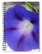 Electric Blue Light Spiral Notebook