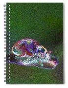 Electric Ladybug Spiral Notebook