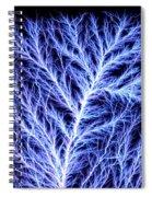 Electrical Discharge Lichtenberg Figure Spiral Notebook
