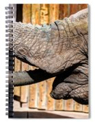 Elephant Feeding Time At The Zoo Spiral Notebook