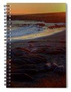 Elephant Rocks Spiral Notebook
