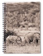 Elephants Walking In A Row Samburu Kenya Spiral Notebook