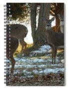Eleven Deer Standing Spiral Notebook