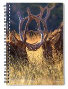 Elk 2 Elk Spiral Notebook