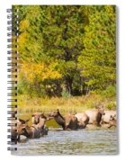 Elk Herd With Autumn Colors Spiral Notebook