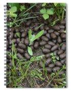 Elk Scat Spiral Notebook