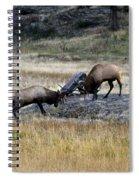 Elks Rutting Spiral Notebook