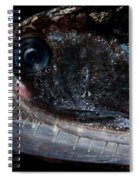 Elongated Loosejaw Spiral Notebook